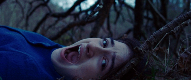 2017 Bloodlist alum, THE OTHER LAMB, by Catherine S. McMullen, has just been announced as premiering at TIFF this year!